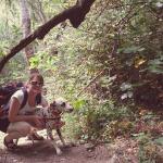 De excursión con los perros en Granada