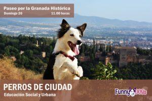 Educación Canina Social y Urbana