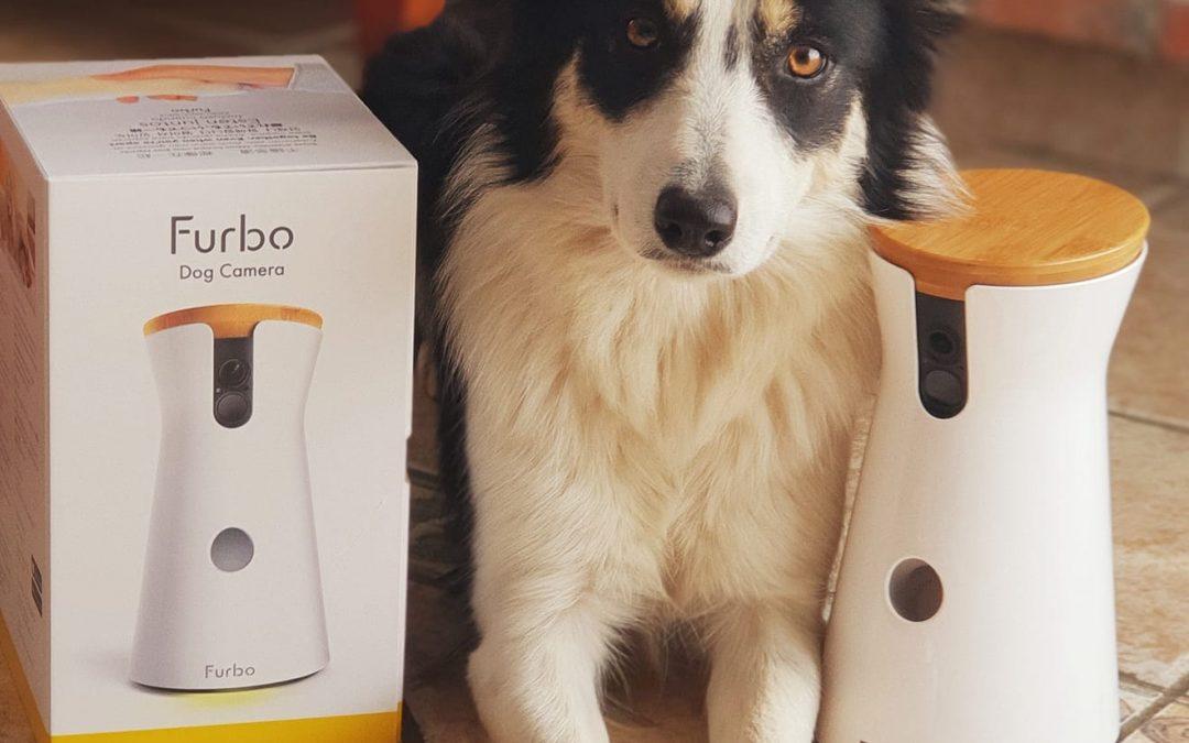 Furbo Dog Camera – La Super Cámara para los Perros