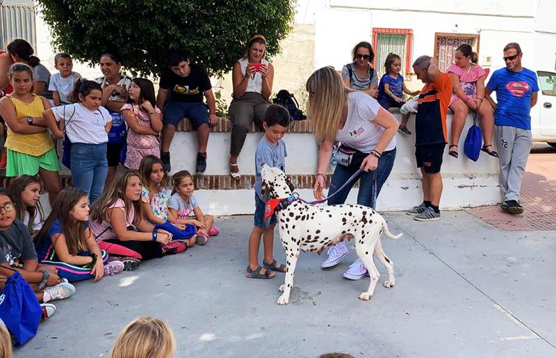 Adiestramiento Canino en Granada - Charlas y Exhibiciones Caninas
