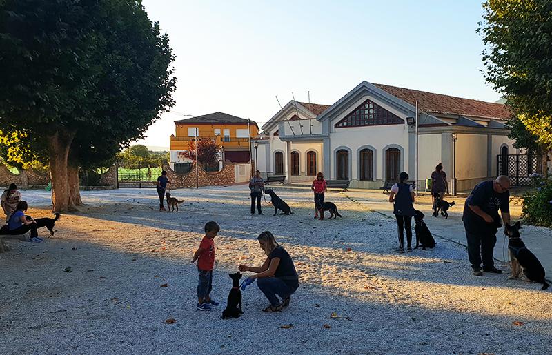 Adiestramiento Canino en Granada - Club Canino en Granada